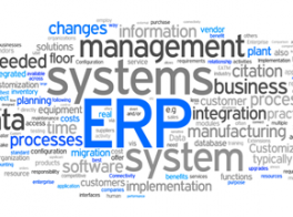 ERP for Telco Operator
